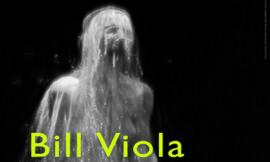 Bill Viola – foto's  (2009)