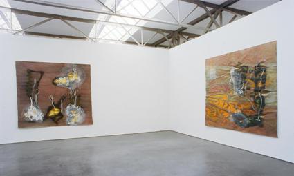 Reinoud van Vught – foto's (1995)