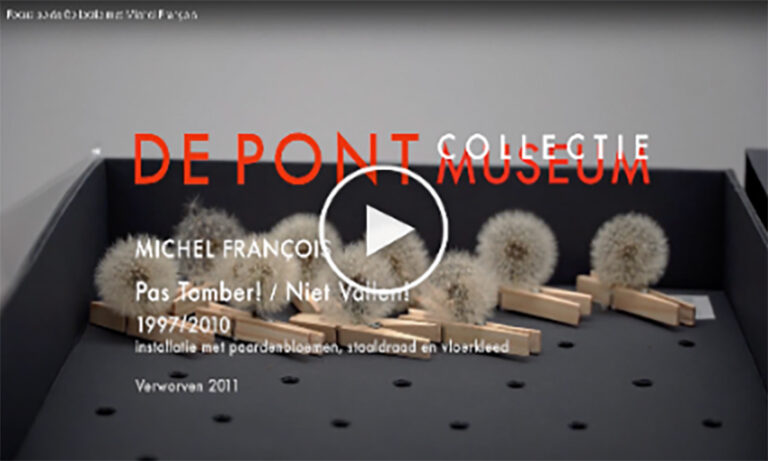 Michel François – Focus op de collectie (2020)